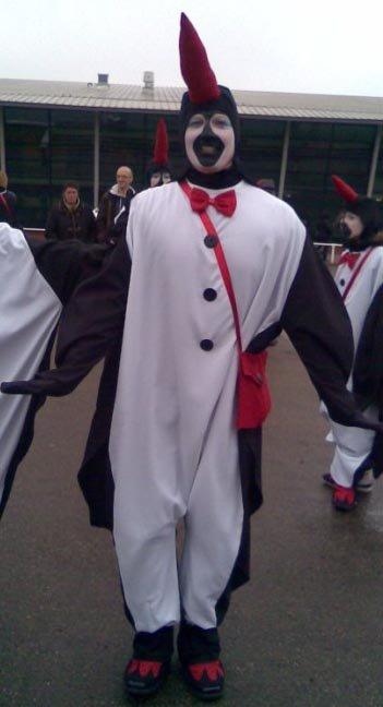 Pinguin L foto