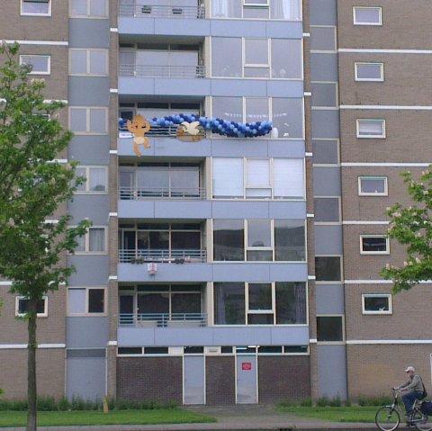 Ooievaar voor aan het balkon foto