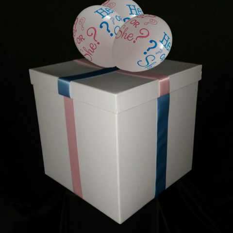 Gender Reveal Box 2 foto