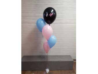 Gender reveal ballon tros he or she