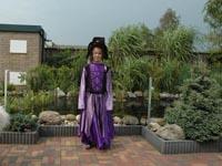 Heksen jurk paars